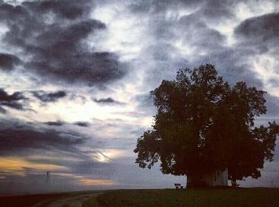 Есента е времето, в което да зареждаме себе си с оставащата светлина, преди небето да потъмнее напълно... Сутрин... гледайте към слънцето, вместо към тъмните облаци, през които то се прокрадва. Впрочем, една от най-старателно пазените тайни   през вековете е, че човек може да стигне до просветление отвътре просто като гледа светлината на слънцето вън.