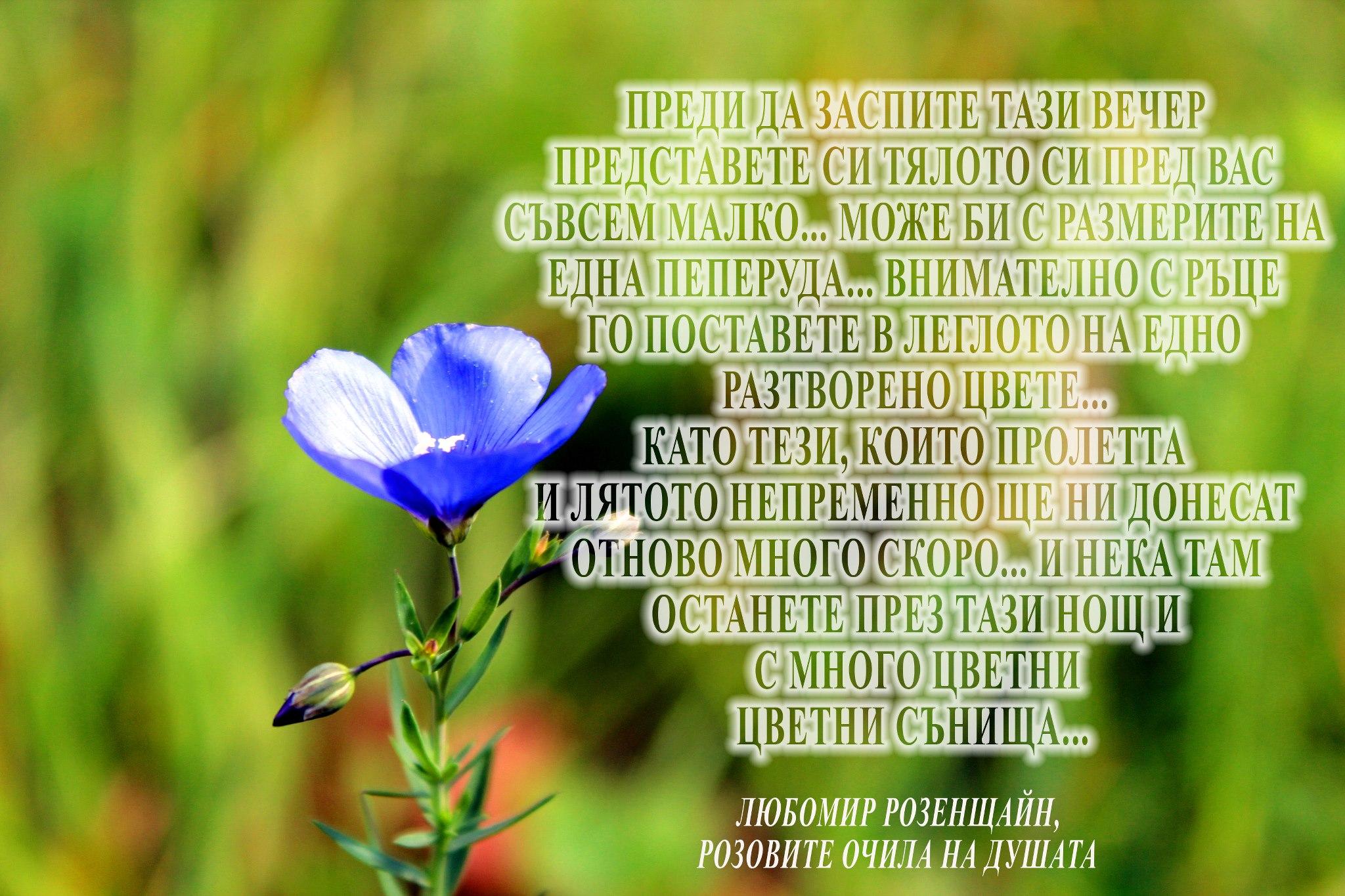 Йога нидра в 3 минути преди заспиване: отдалечете се от тялото си, поставете го за тази нощ внимателно на хубаво място, в леглото на цветето ...