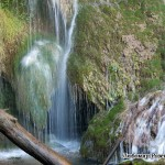 Събудете в себе си силата на пролетните води... които се движат неудържимо напред след скованата неподвижност на зимата и отместват всичко от нея, отнасят го надалеч, отмиват го, за да разчистят път за новото събуждане на пролетта...