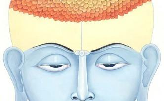 Това е светът на сахасрара. Тази чакра се нарича хилядолистна и се символизира от хилядолистния лотус, но всъщност под хиляда тук се разбират безкрайно много листа и това вече не са листата на земното дърво на познанието, а на едно следващо, което започва оттук. Сахасрара, по същият начин, по който и муладхара, е преходна чакра. Муладхара е прагът към психичната реалност, сахасрара е прагът към реалността над психиката.